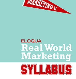REAL WORLD MARKETING SYLLABUS